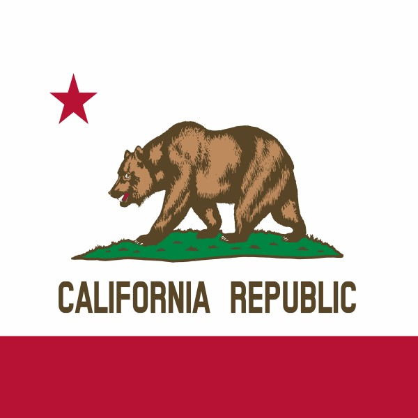 C294 California Flag