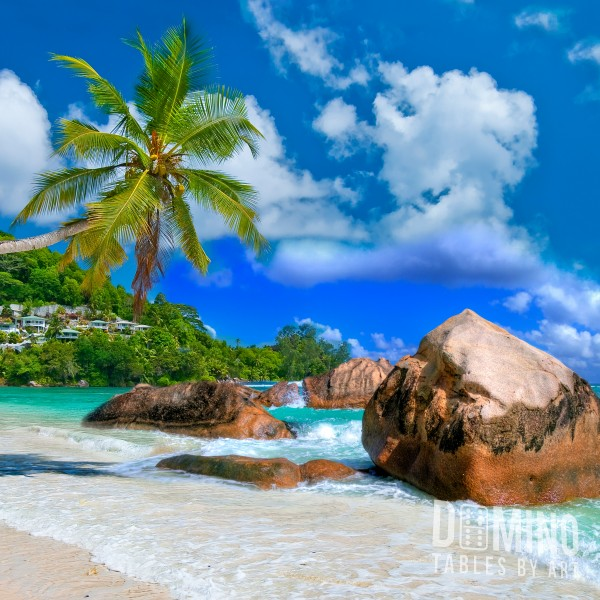 T007 Tropical Beach