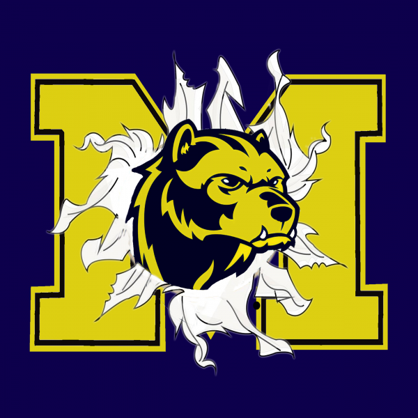 TS043 Michigan Wolverine