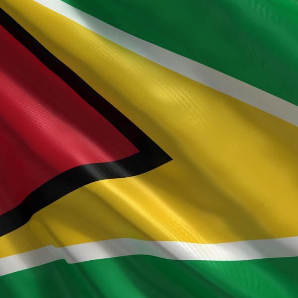 C105 Guyana Flag