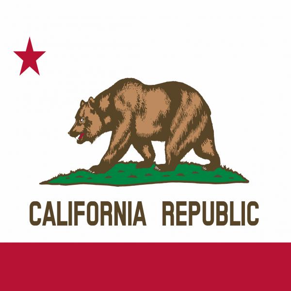 C294 California Flag