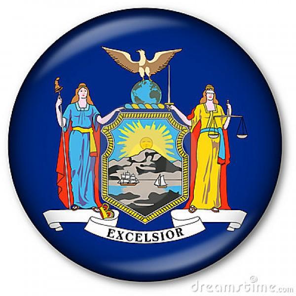 C296 NY State Flag