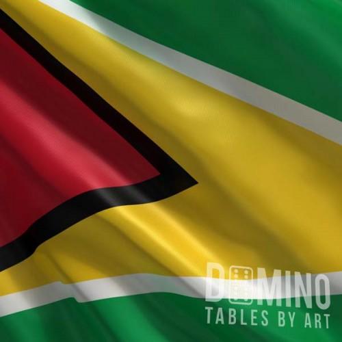 T140 Guyana Flag